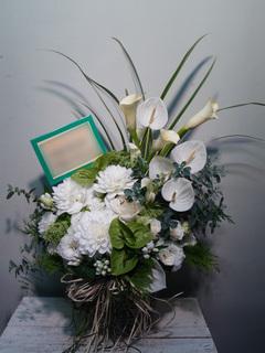 周年御祝 白×グリーン