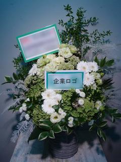 御祝 企業ロゴ入り 白×緑 (明治安田生命ホール)